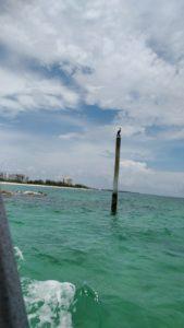 Ute med glasbottenbåt