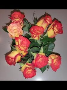Så vackra rosor