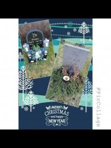 Det är så fint på kyrkogården!