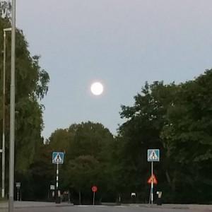 fullmåne en underbar sommarkväll